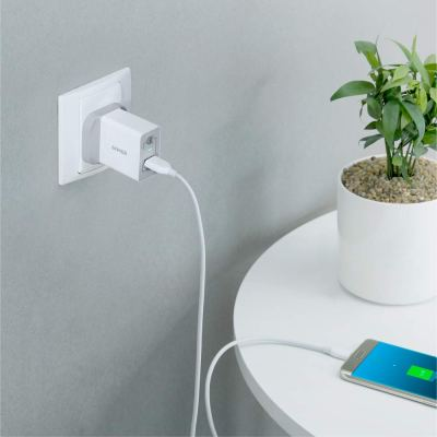 Anker 18W PowerPort+ 1 with Quick Charge 3.0 and Micro USB 3ft Cable