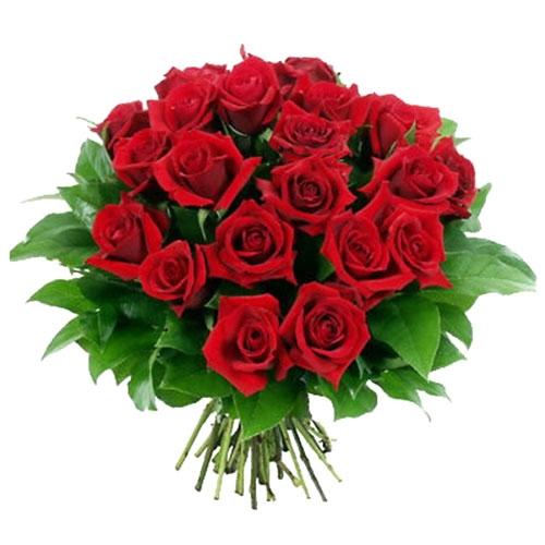 Cenere sul capo e rose nel cuore