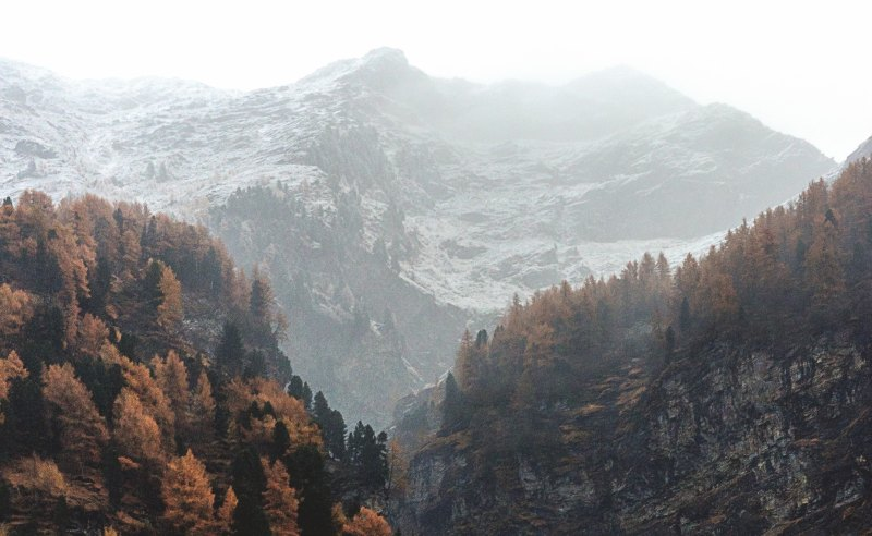 view of mountains and forest