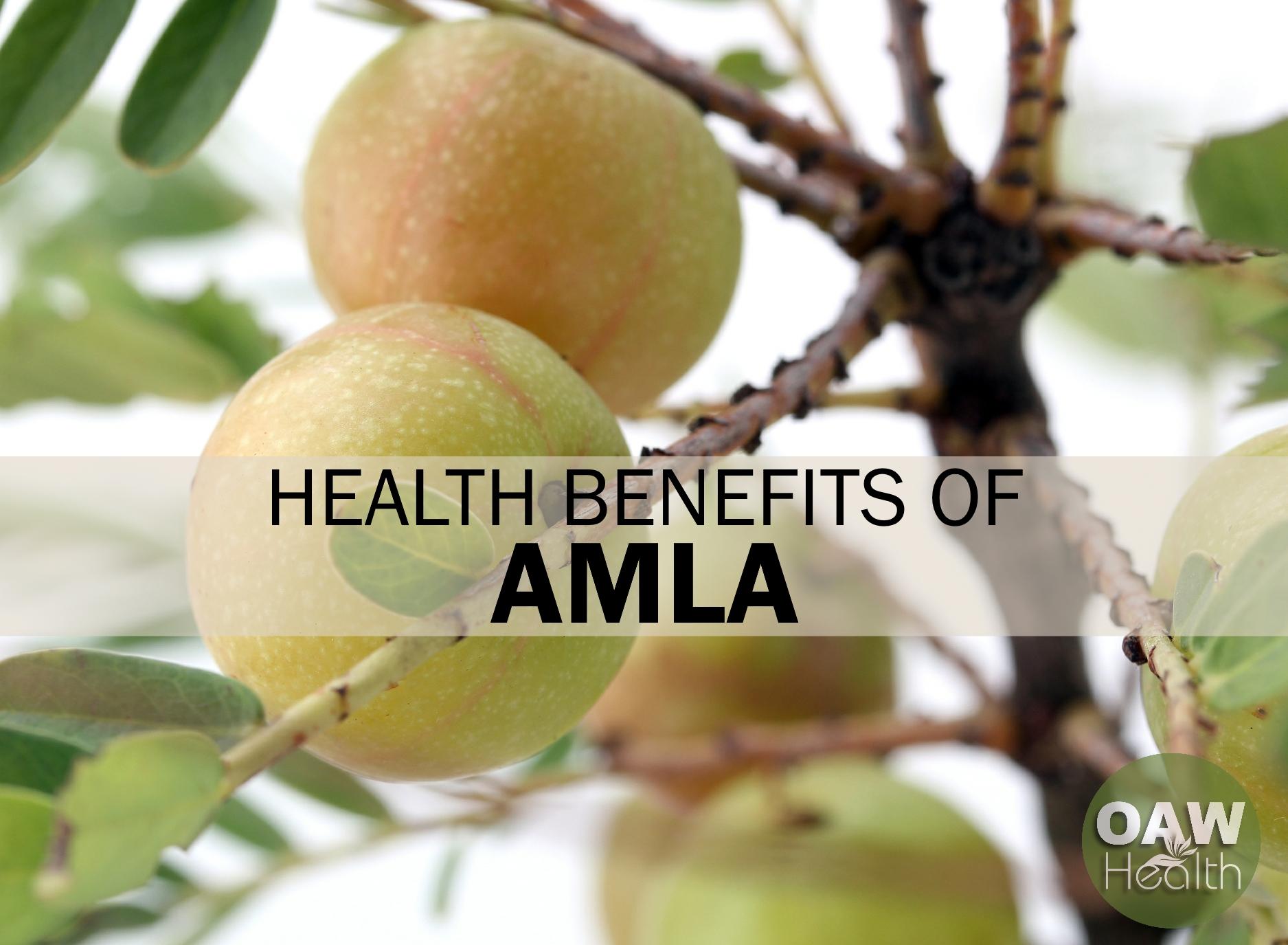 Health Benefits of Amla – Indian Gooseberry