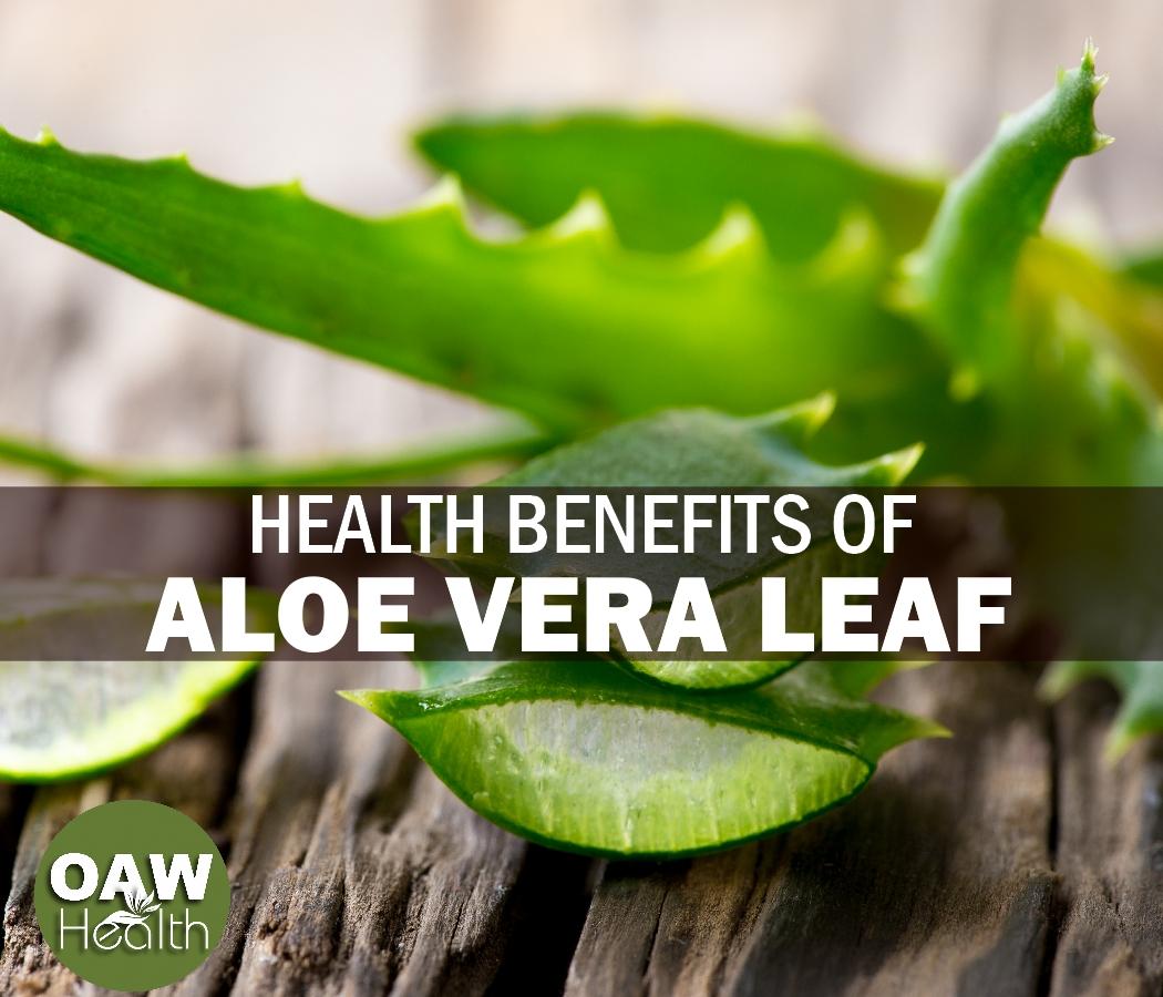 Health Benefits of Aloe Vera Leaf