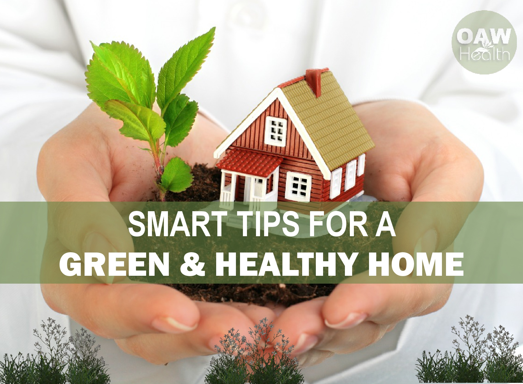 Smart Tips for a Green and Healthy Home