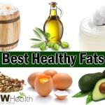 ten best healthy fats
