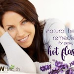 natural remedies for pesky hot flashes