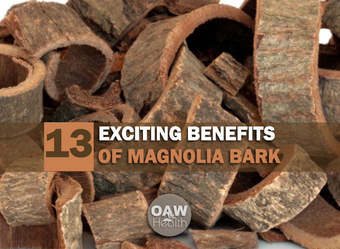 13 Exciting Health Benefits of Magnolia Bark