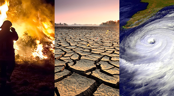 Inicia Congreso trabajos con la Cooperación Alemana para actualizar la Ley de Cambio Climático en Oaxaca