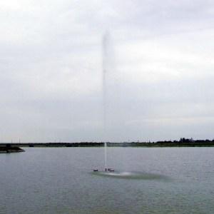 baštenska-fontana-2011_07080027_1