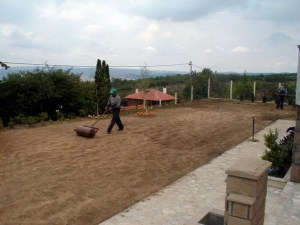 Primer izgleda dvorišta pre radova.