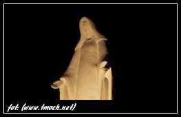 NIEPOKALANE POCZĘCIE NMP  – Uroczystość patronalna Wspólnot  Ruchu  Światło - Życie i Służby Liturgicznej