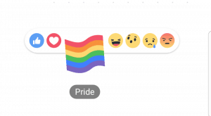 Facebook pride reaction