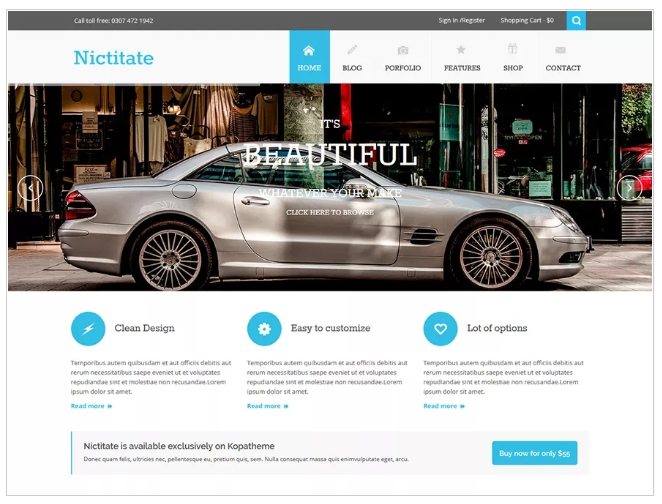 free wordpress blogging themes and free template for website