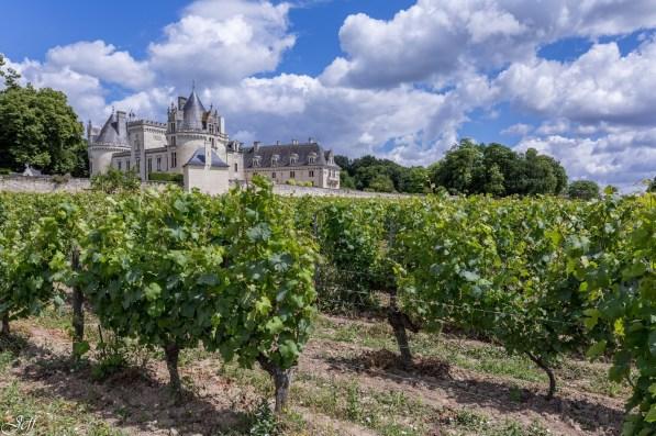 Chateau de Breze-2