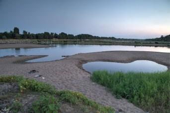 Visite à la Pointe Bouchemaine au coucher de soleil entre la Loire et la Maine (1)