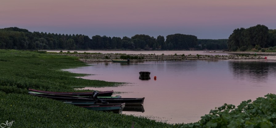 Visite à la Pointe Bouchemaine au coucher de soleil entre la Loire et la Maine (3)