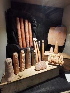 museum des sciences naturelles Angers_153351