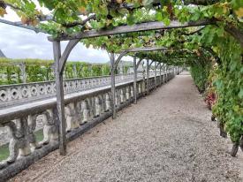 chateau et jardins de villandry_New Name_3df22397-54fc-4159-8b26-f19b4698280a