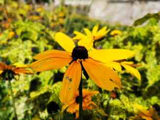 chateau et jardins de villandry_New Name_faa404ce-56ae-4efa-81a5-86edfa1bc951