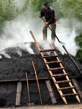 Carbono biológico de fezes humanas