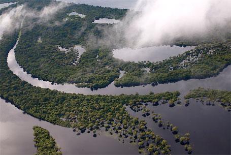 Fotografia aérea de parte da Amazônia brasileira