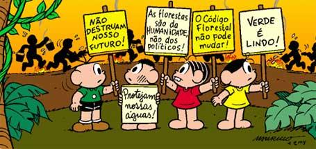 Ilustração marcante sobre lei de proteção as florestas