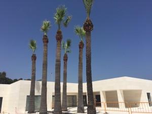 Obras y Servicios Malaga