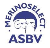 MerinoSelectASBV300dpi
