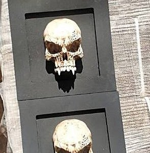 Mini-quadro Vampire Skull
