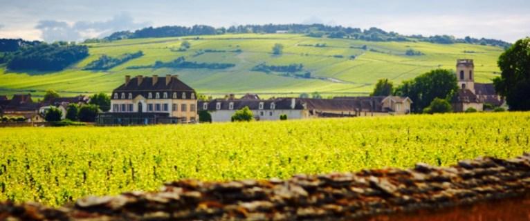 Visit the Chateau de Pommard