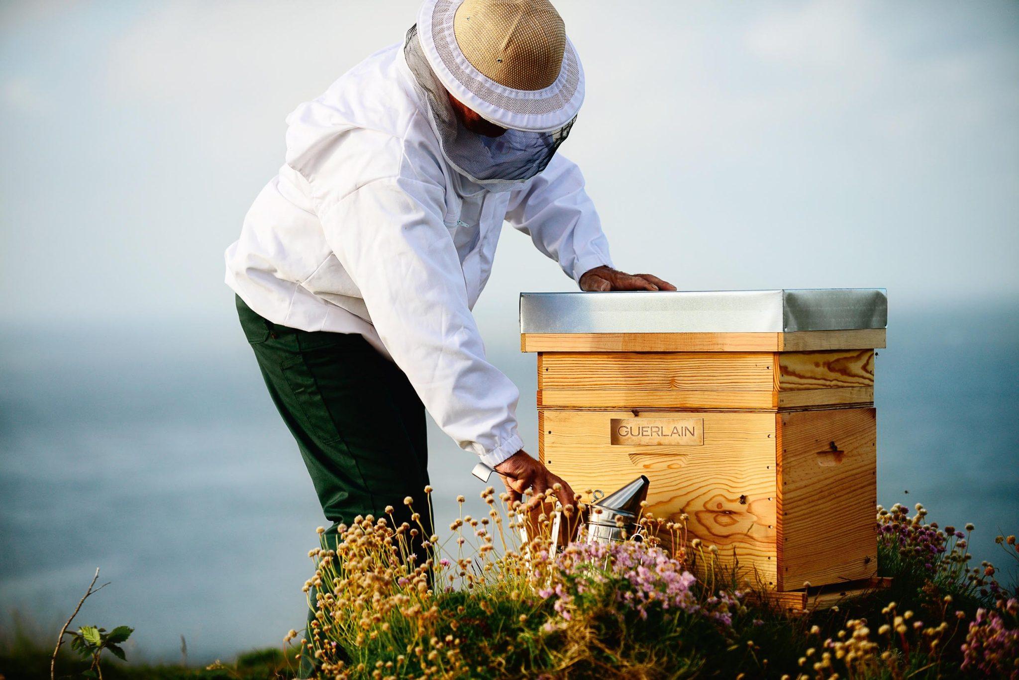 BEE RESPECT