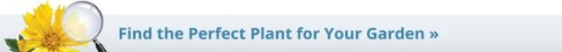 PlantFinder_700_Text