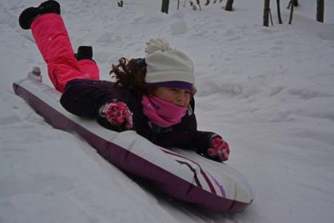 sled4