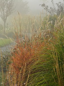 fog-front-bed-flame