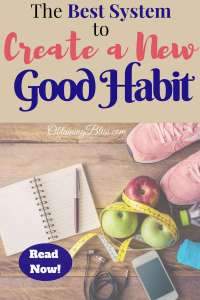 The best way to create a new good habit as well as getting rid of those horrible habits you've had since you were young is to have a good system in place. Applying this strategy will make you the exception. #goals #habits #personalgrowth #personaldevelopment #selfdevelopment #selfgrowth #intentionalliving