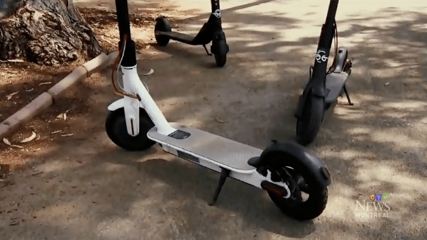 蒙特利尔计划引进电动踏板车