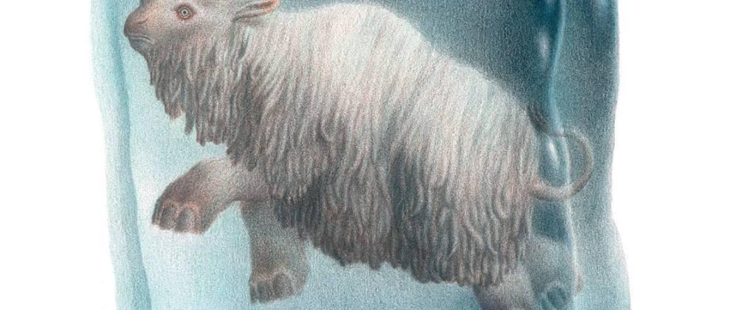 One Glass Eye - Elasmotherium