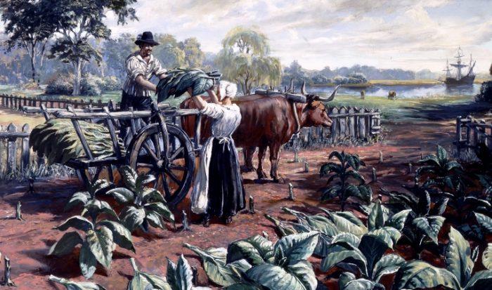 tobacco-Haul