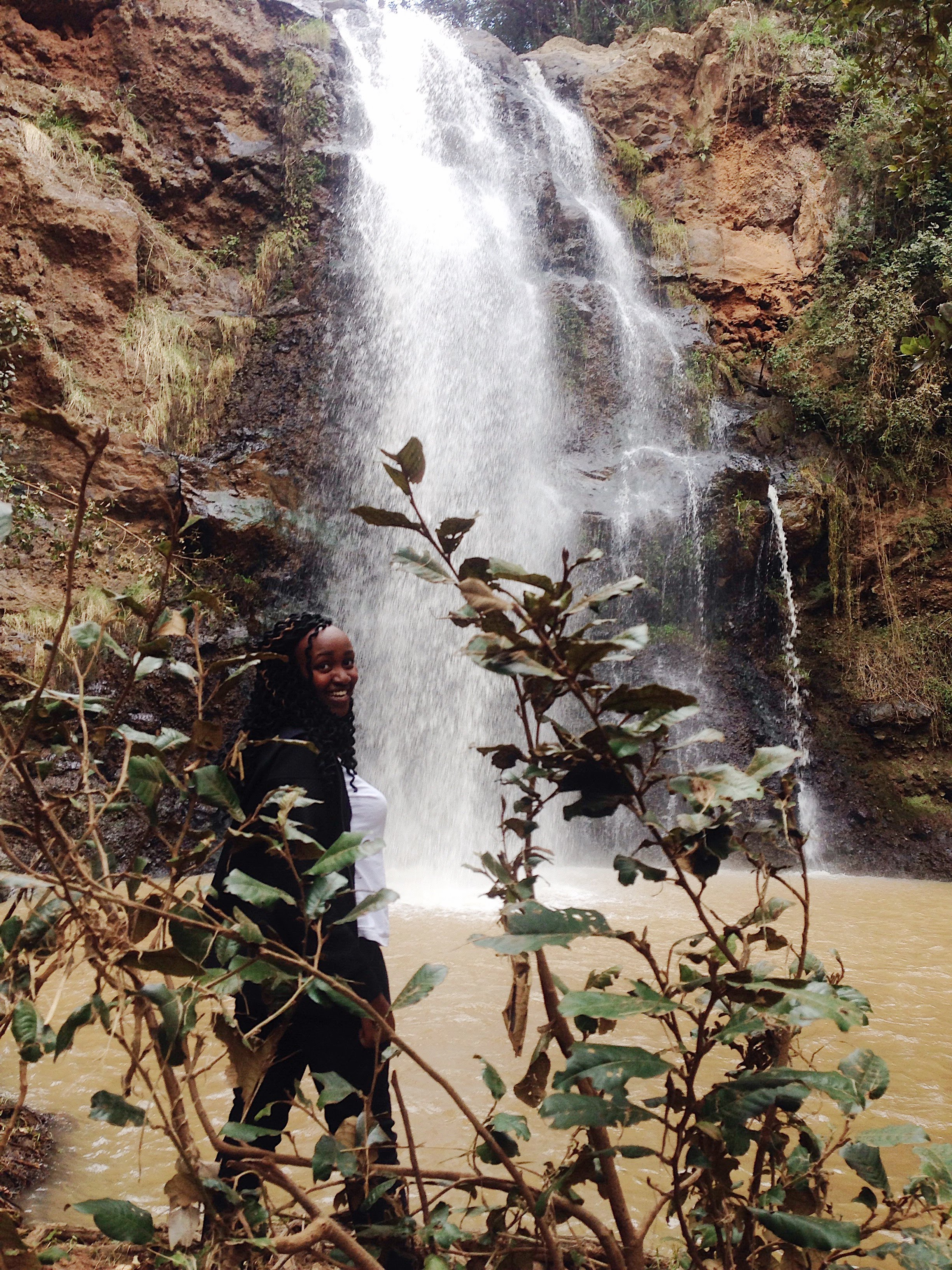 Ngare Ndare Forest