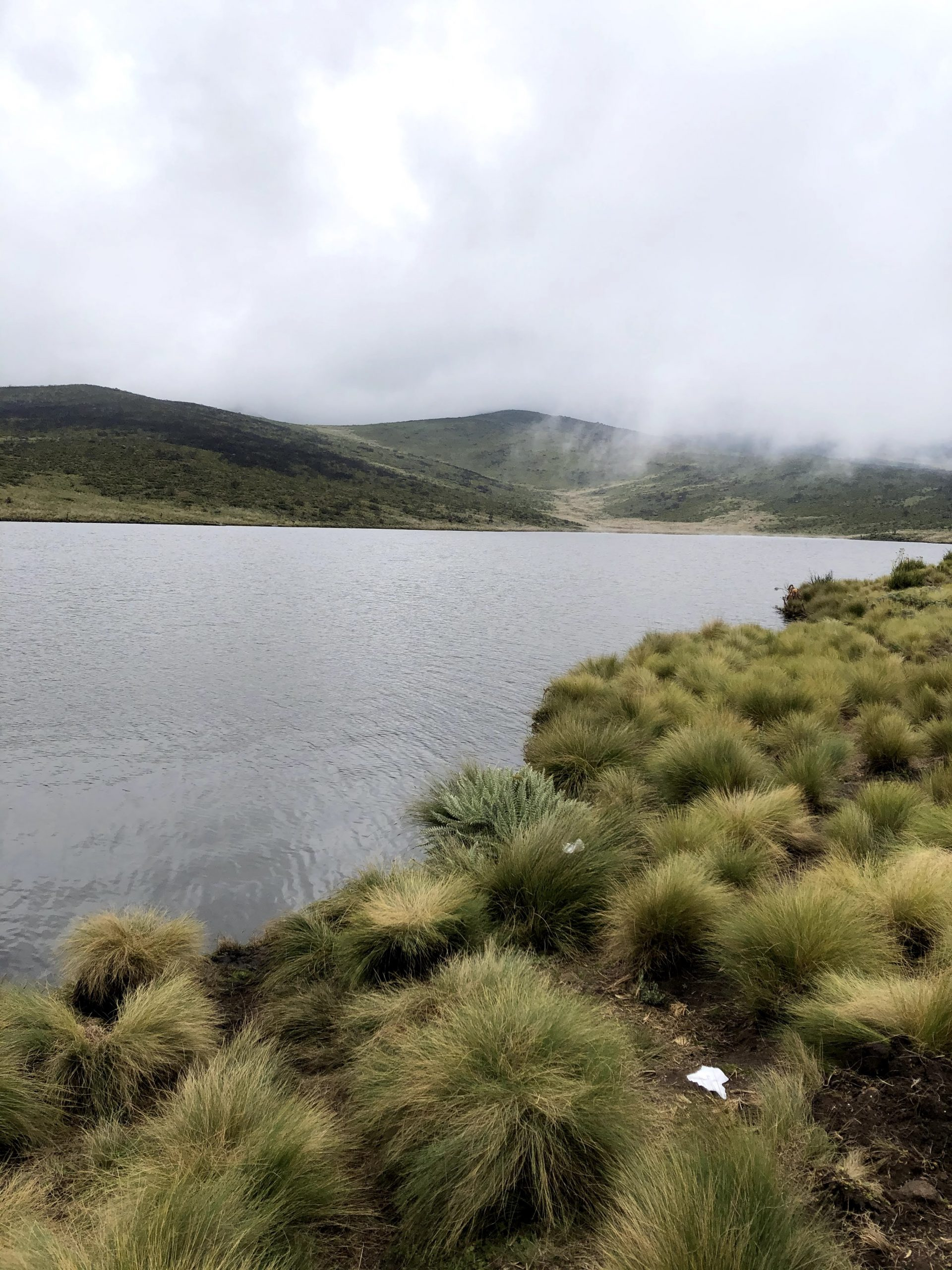 Hiking to Lake Ellis, Mt Kenya