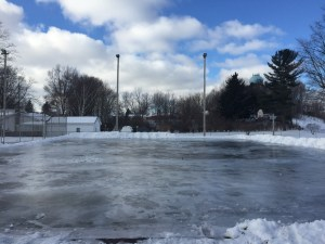 shelby ice rink