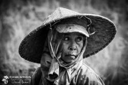 Balinese lady in Rice Paddy