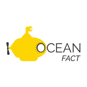 Ocean Fact - The Yellow Submarine
