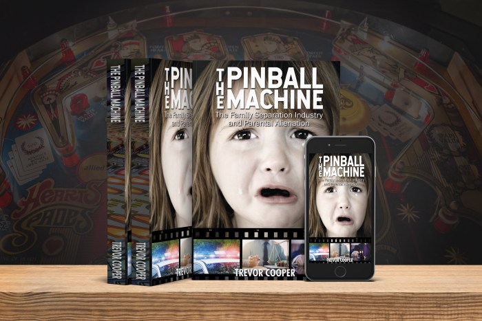 The Pinball Machine