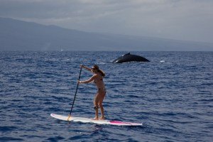The History Of Paddle Boarding