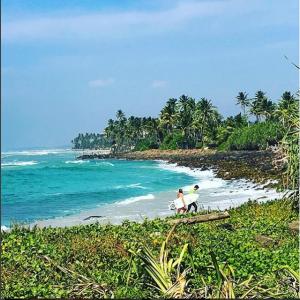 How surfing improves your emotional intelligence – Jamie Godwin