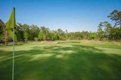 Ocean Ridge Plantation-tiger's eye golf course