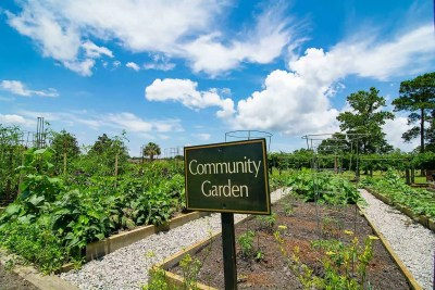 Ocean Ridge Plantation Community Gardens