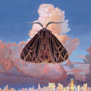 chairlift-moth-new-album