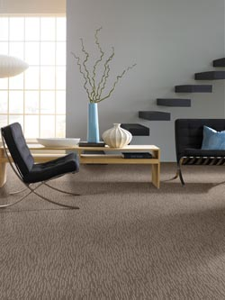 Carpet Stores in Lewes  DE   Shop Reputable Brands   Styles Carpet flooring in Lewes  DE