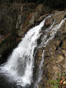 1331771_hawk_falls