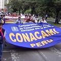 peru_conacami120